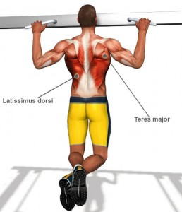 Back-Exercises-l